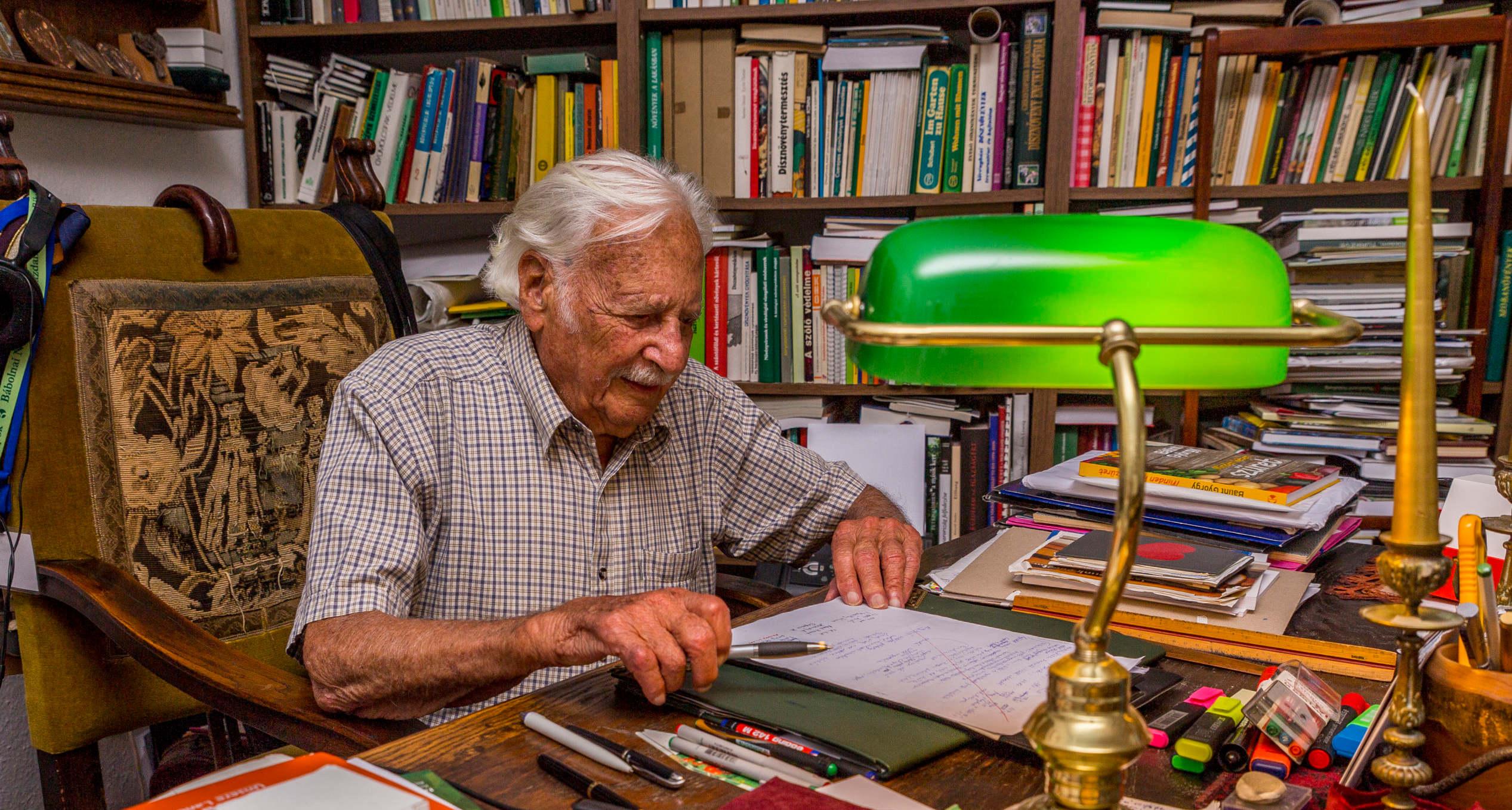 Bálint György megszökött a koncentrációs táborból