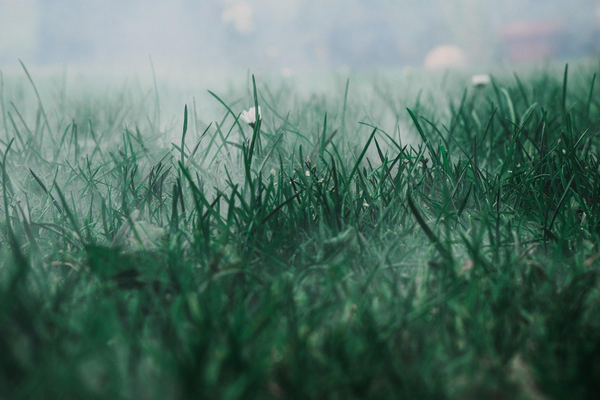 Ősszel több a ködös reggel