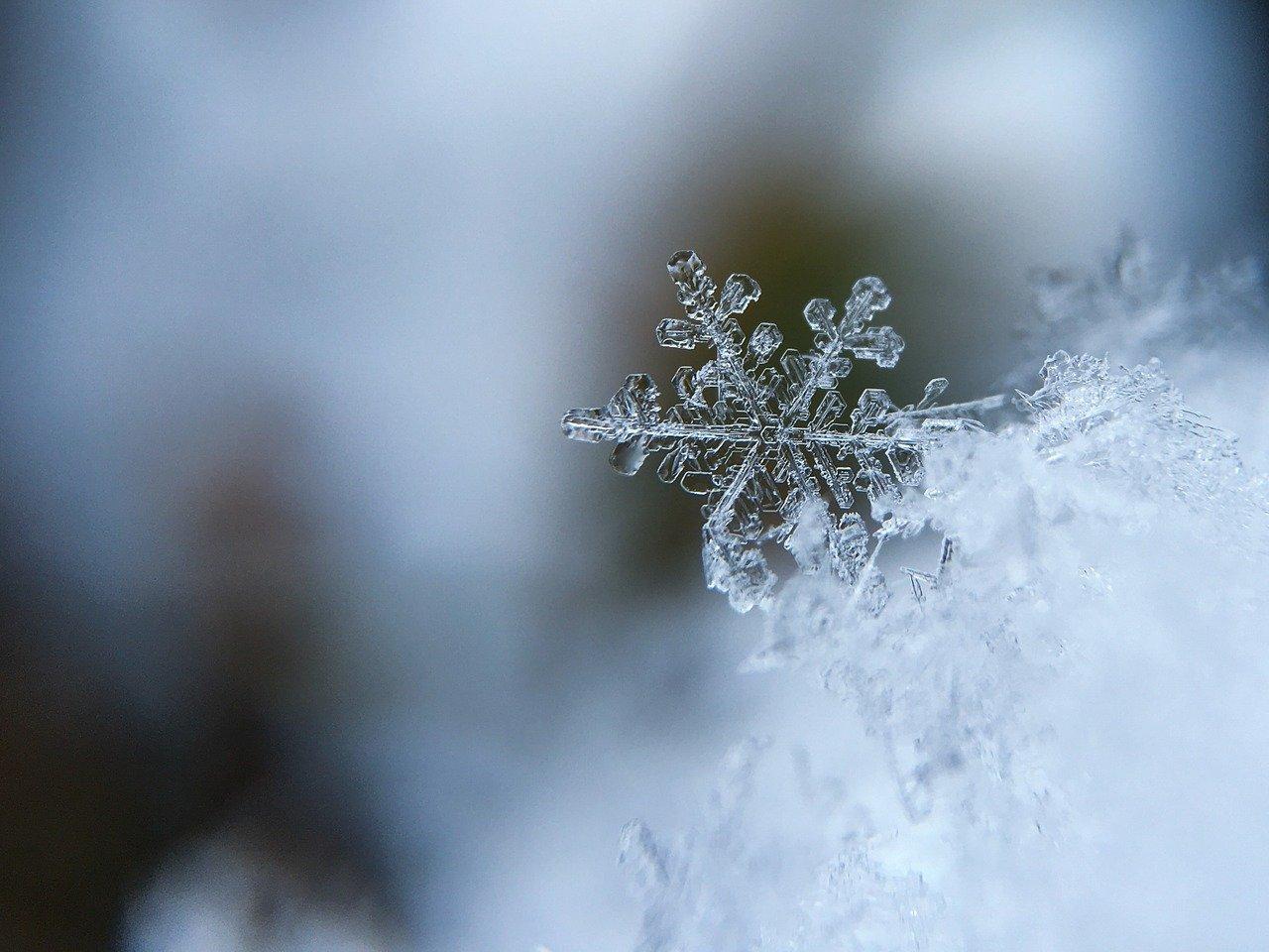 hóvihar