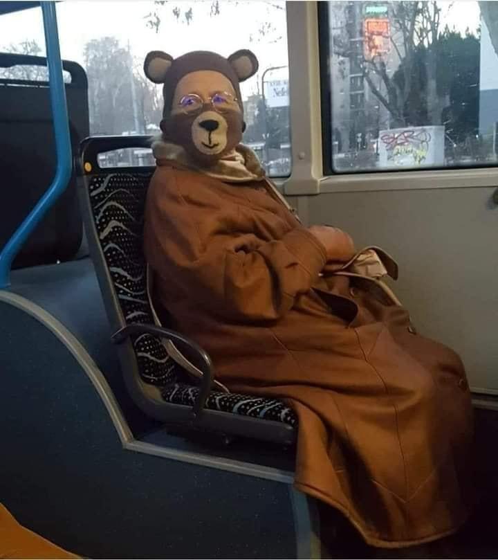 Mackó jelmezben utazott a hölgy a buszon