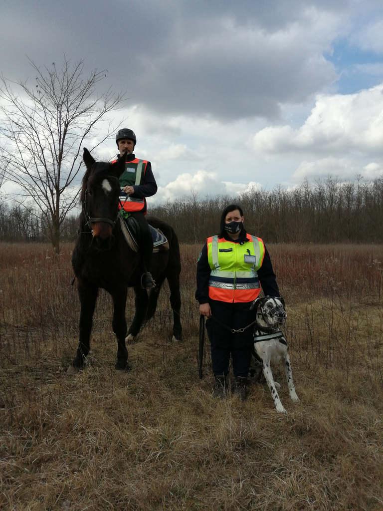 Kutyás és lovas polgárőrök járják a megyéket, hogy fülön csípjék az illegfális szemetelőket.