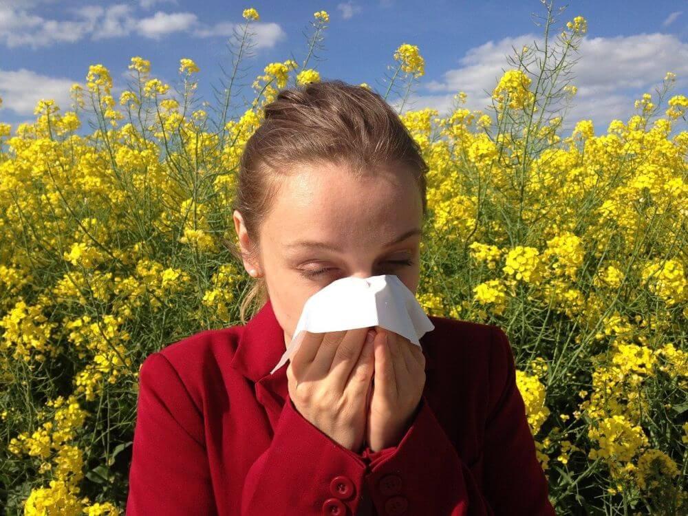 Allergia 01