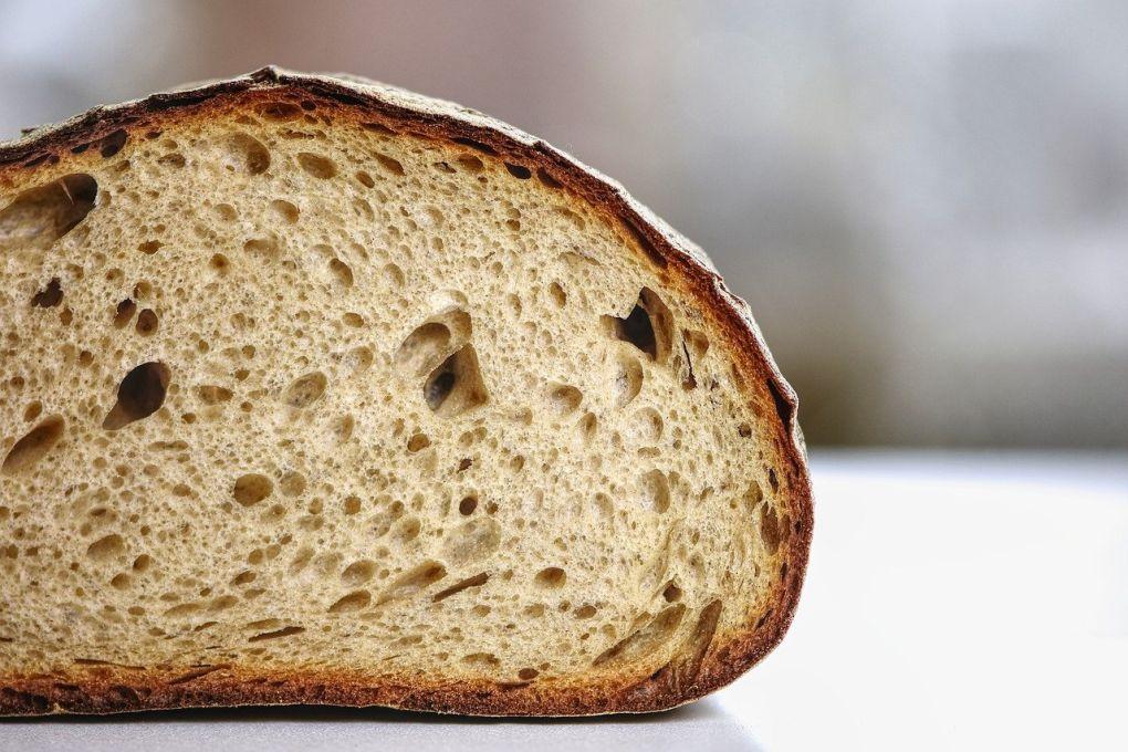 Penészes kenyér 01