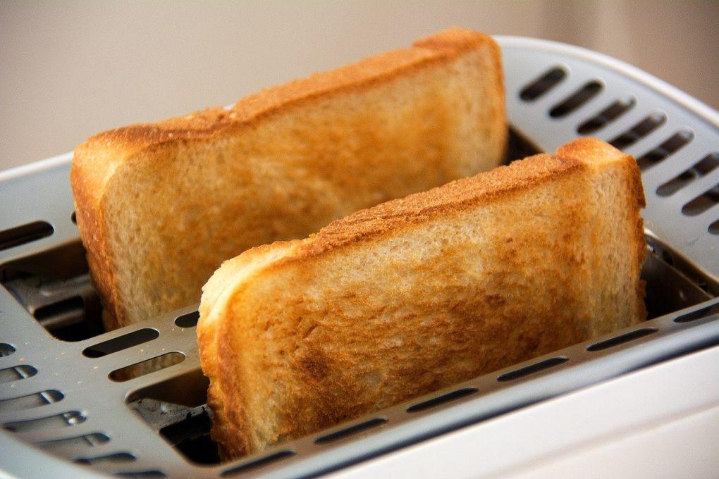 Penészes kenyér 03