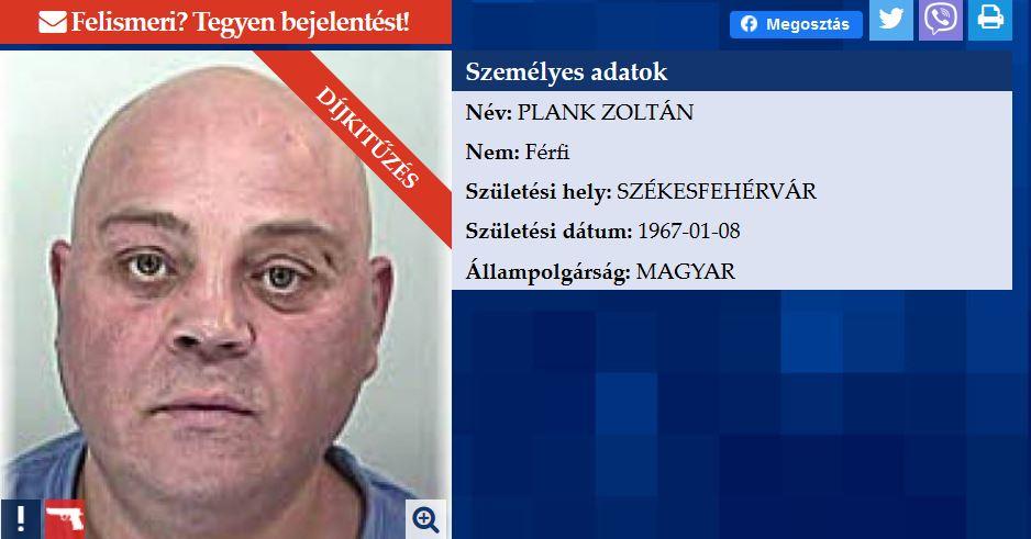Plank Zoltán