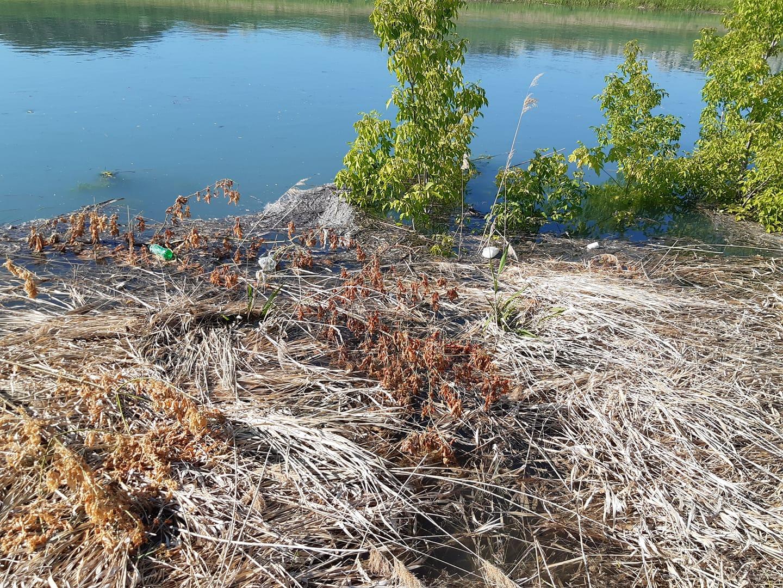 ökológiai katasztrófa