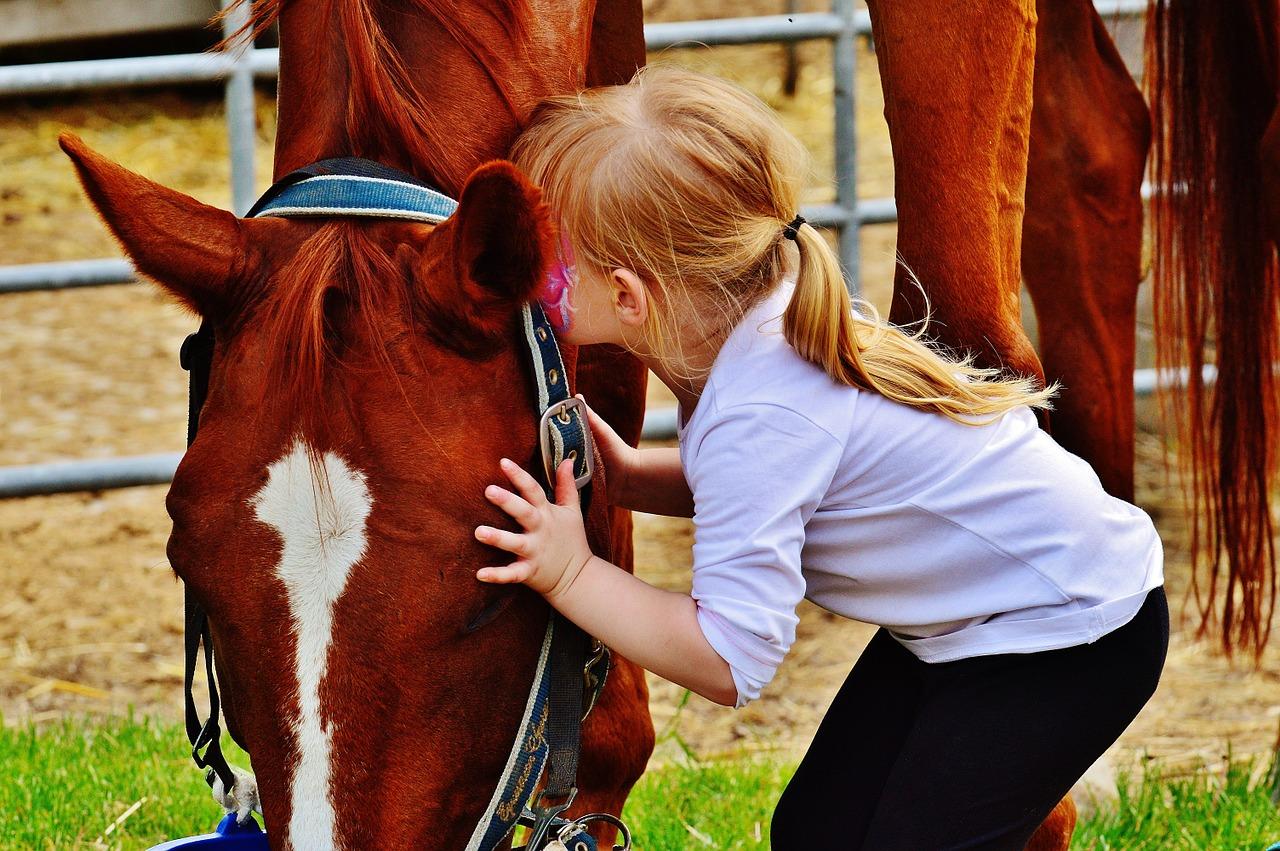 kislány és egy ló